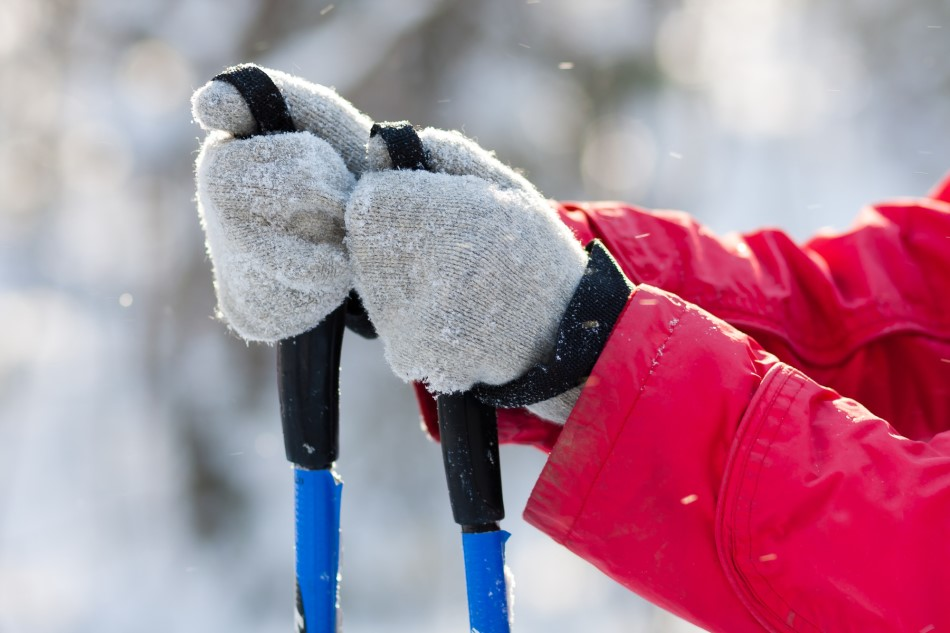 11 Best Ski Mittens for Your Next Snowy Adventure